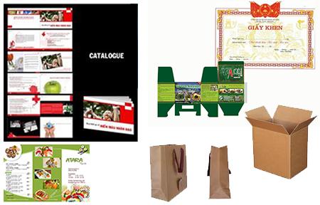 WEB制作、プログラム開発などのアウトソーシング、紙媒体の印刷などをベトナムで